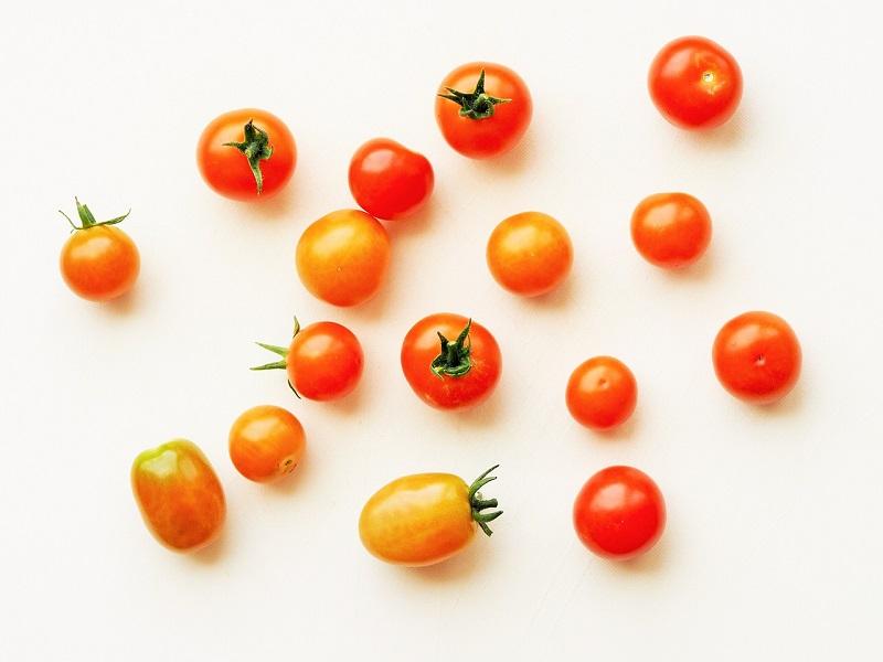 FiNCダイエット家庭教師アプリの特徴